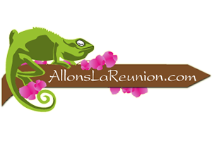 ALLONSLAREUNION